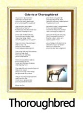 Click to View the Thoroughbred Ode